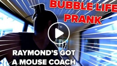 Photo of WATCH: PBA Bubble Life Day 10 [Mouse Prank | Mark Caguioa's Woah Dance]